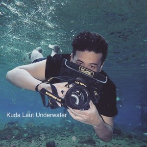 Kuda Laut Underwater Photography with DiCAPac Waterproof Case
